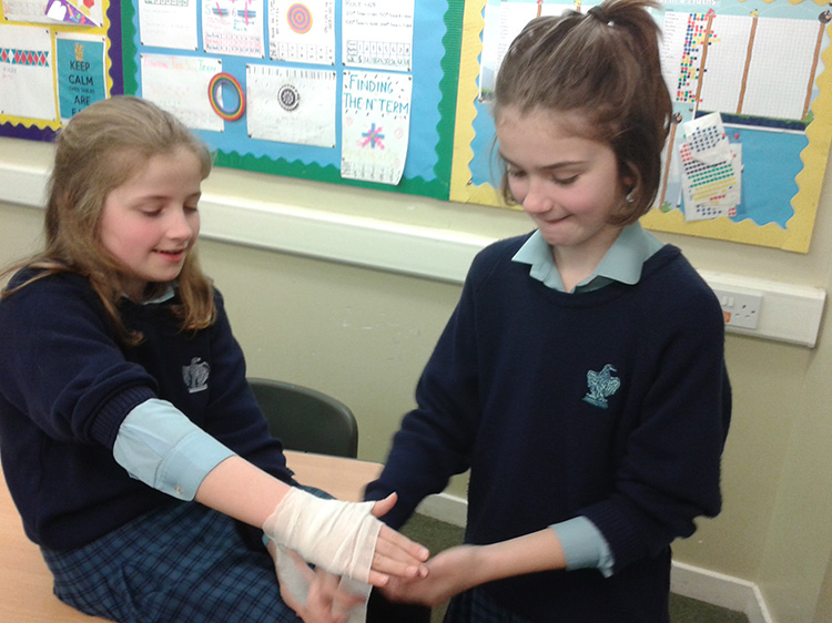 First Aid - Blood, Cuts and Bruises